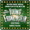 Young Frankenstein theatre breaks