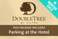 Doubletree Hilton Flash Sale