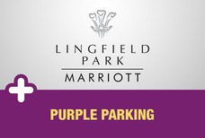 Marriotlparkpurple