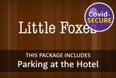 LGW little foxes parking covid main tile