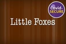 LGW little foxes covid main tile